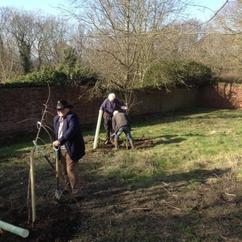 tree planting at larpool hall garden